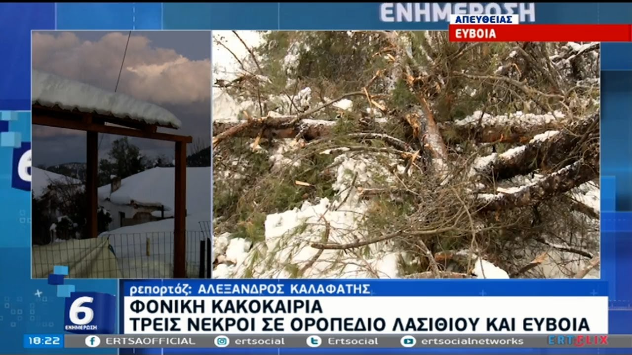 Τρίτος νεκρός από την επέλαση του χιονιά | 16/02/2021 | ΕΡΤ