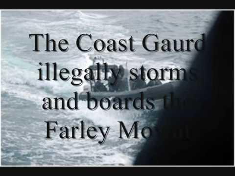 Sea Shepherd- Defending Seals