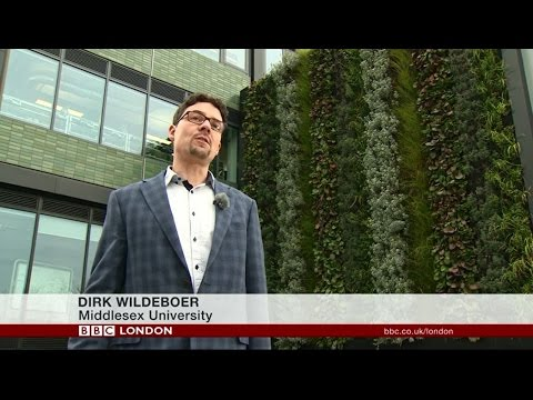 living walls and airpollution