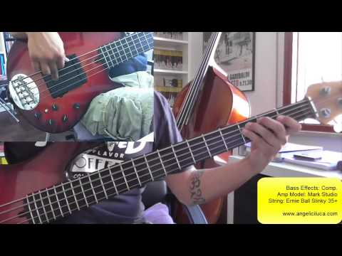 It's So Hard - Anouk - Bass Cover