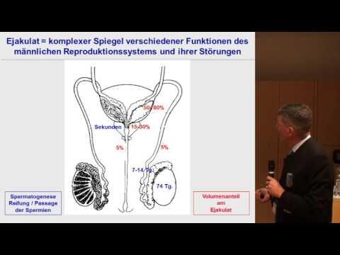 Prävention von Prostatakrebs bei Männern