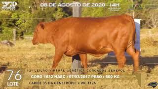 Coro 1632 b4 fiv