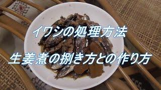 イワシの処理方法(4) - 生姜煮の捌き方と作り方 -