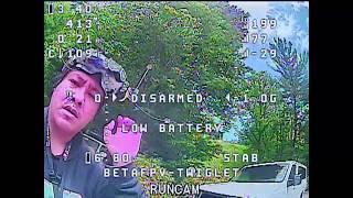 Twiglet Mini - RacerX FPV