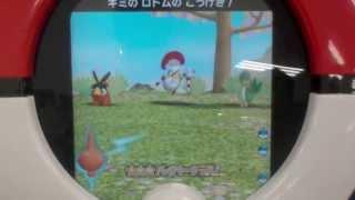 シュバルゴ  - (ポケットモンスター) - ポケモントレッタ 第4弾  シュバルゴ ゲット