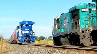 Trens em Ação - Corredor Exportação Paulista, Maio/Junho 2016.