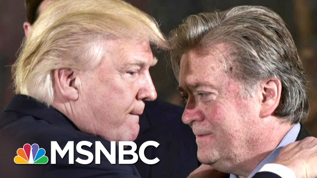 Steve Bannon Uniquely Odd Among Donald Trump's Many Weird Staff Choices | Rachel Maddow | MSNBC thumbnail