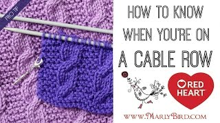 Beginner Basics Knitting: How to Know When You're on a Cable Row or Counting Cable Rows