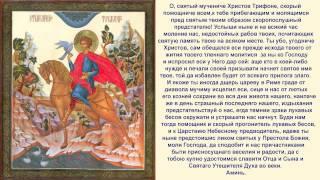 ☦Молитва от козней диавольских Св.мученику Трифону☦