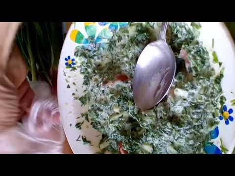 Рецепт салата из мокрицы Ютуб ютюб youtube
