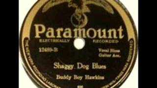 Shaggy Dog Blues (Buddy Boy Hawkins, April 1927) Blues Guitar Legend