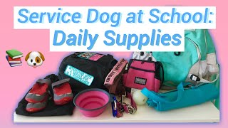 Service Dog At School: Daily Supplies