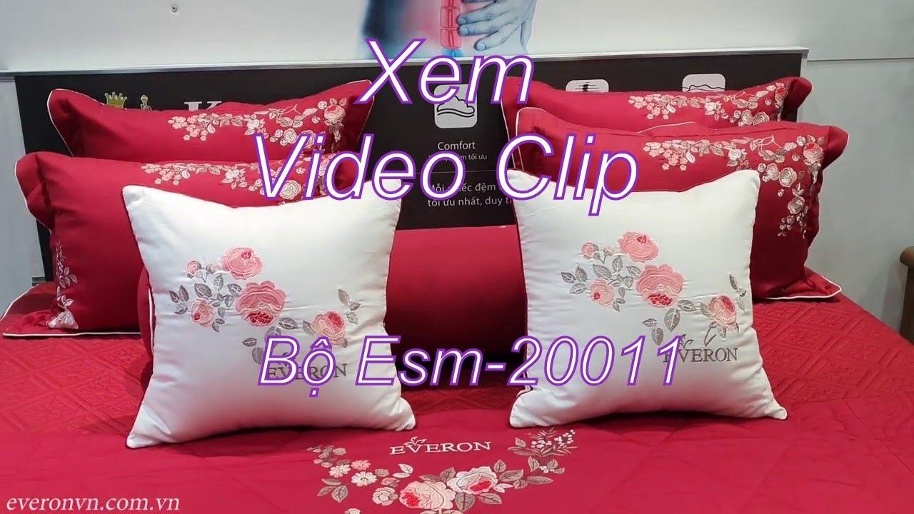 Bộ Everon Esm-20011