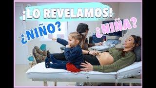 REVELAMOS Si Es NIÑO O NIÑA | LA REACCIÓN De HERMANA MAYOR Al Ver Al BEBÉ | 12 SEMANAS De EMBARAZO