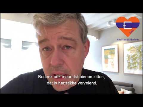 Hart onder de riem van Charles Groenhuijsen