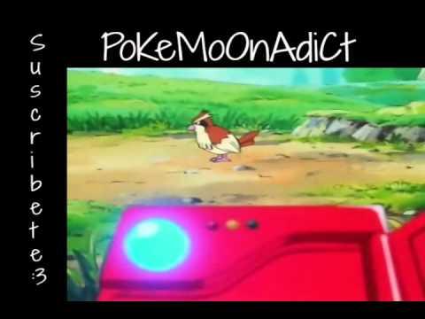 Pokemon ¡Atrapalos ya! capitulo 1 [pokemon, yo te elijo]