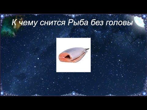 К чему снится Рыба без головы (Сонник)