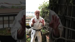 Terminology – Sensei and Shihan
