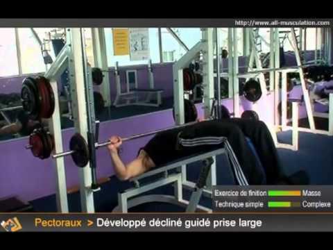 Sur quels muscles agit ekspander