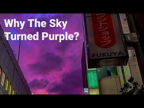 Why The Sky Turned Dark Purple In Japan When Century's Strongest Cyclone Typhoon Hagibis Approached