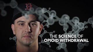 The Science of Opioid Withdrawal - Video