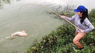 Gái Xinh Câu Cá Khủng Độc Lạ Thế Này Thì Không Có Đối Thủ Rồi