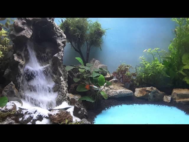 Aquascape waterfall tanjungpinang part 2