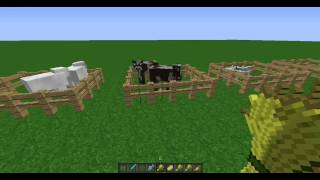 Minecraft: How To Get All Animals To Follow You