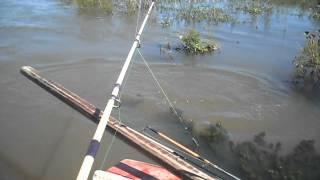 preview picture of video 'Excursiones de pesca - www.atodopescaconmoro.com.ar'