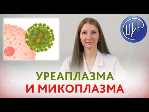 Rendeljen gyógyszert a parazitákra