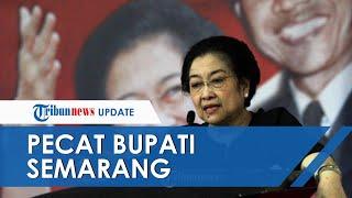 Megawati Pecat Bupati Semarang dan Anaknya dari Keanggotaan PDI-P, Status Istri Jadi Penyebab