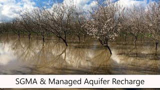 Sustainable Groundwater Management Act: The Potential for Managed Aquifer Recharge