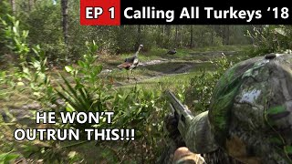 HE RAN RIGHT BY US!!! - Osceola Public Land Turkey Hunt - Calling All Turkeys