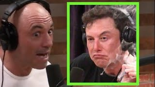 Joe Rogan on the Elon Musk Controversy