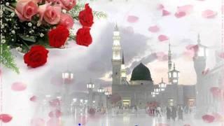 Güllerin efendisi Ertuğrul Erkişi
