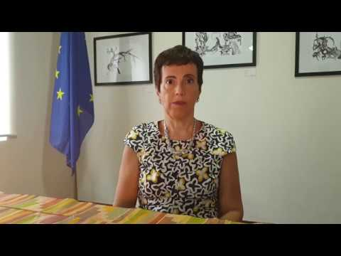 Statement of the EU Ambassador on the World Day Against Child Labour