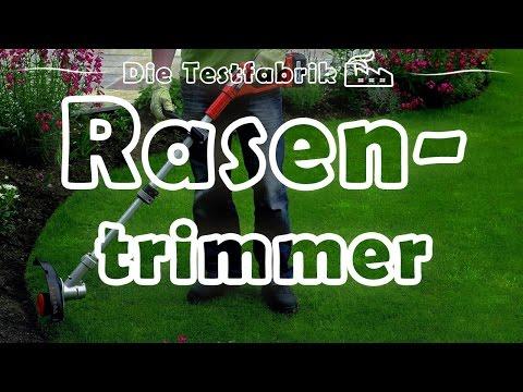 ✂️ Akku Rasentrimmer Test – 🏆 Top 3 Akku Rasentrimmer im Test