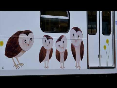 里山動物彩繪列車空拍影片