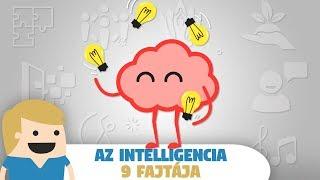 Az Intelligencia 9 fajtája! - Neked melyik a domináns intelligenciád?