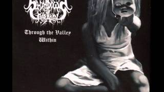 Shadows Of Paragon - Without A Veil Concealing My Sight (Christian Black/Death Metal)