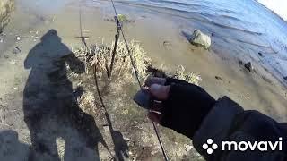 Отчеты о рыбалке киев декабрь 2020
