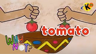 Extracurricular | Tomato | Why Not?