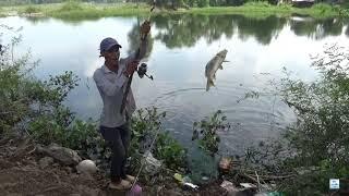 Câu cá giải trí - một mình chiến đấu với bầy hu gô