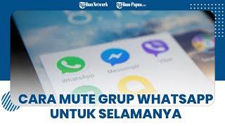 Cara Mute Grup WhatsApp untuk Selamanya, Tak akan Muncul Notifikasi