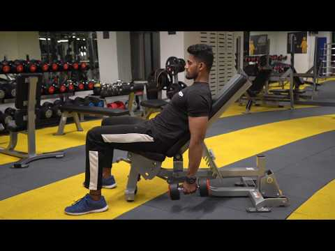 Incline Dumbbell Alternative Curl