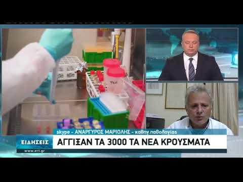 Αναργ. Μαριόλης: Το σύστημα υγείας θα δεχθεί αφόρητες πιέσεις τις επόμενες ημέρες | 05/11/2020 | ΕΡΤ