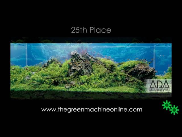 IAPLC 2010 Top 27 Aquascapes