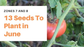 13 Seeds to Plant in June - [Zones 7 and 8]