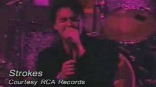 The Strokes - I Can't Win (Live)