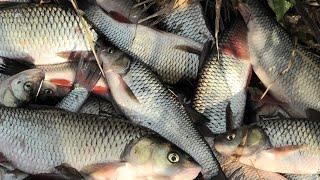Рыбалка в октябре уфалеева